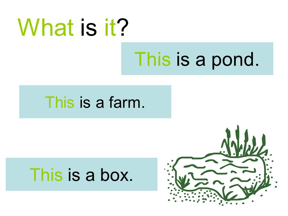What is it This is a farm. This is a box. This is a pond.