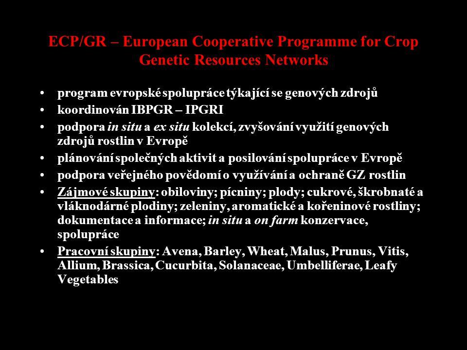 ECP/GR – European Cooperative Programme for Crop Genetic Resources Networks program evropské spolupráce týkající se genových zdrojů koordinován IBPGR – IPGRI podpora in situ a ex situ kolekcí, zvyšování využití genových zdrojů rostlin v Evropě plánování společných aktivit a posilování spolupráce v Evropě podpora veřejného povědomí o využívání a ochraně GZ rostlin Zájmové skupiny: obiloviny; pícniny; plody; cukrové, škrobnaté a vláknodárné plodiny; zeleniny, aromatické a kořeninové rostliny; dokumentace a informace; in situ a on farm konzervace, spolupráce Pracovní skupiny: Avena, Barley, Wheat, Malus, Prunus, Vitis, Allium, Brassica, Cucurbita, Solanaceae, Umbelliferae, Leafy Vegetables