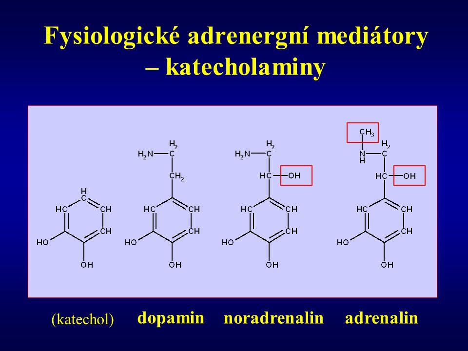 Fysiologické adrenergní mediátory – katecholaminy dopamin noradrenalinadrenalin (katechol)