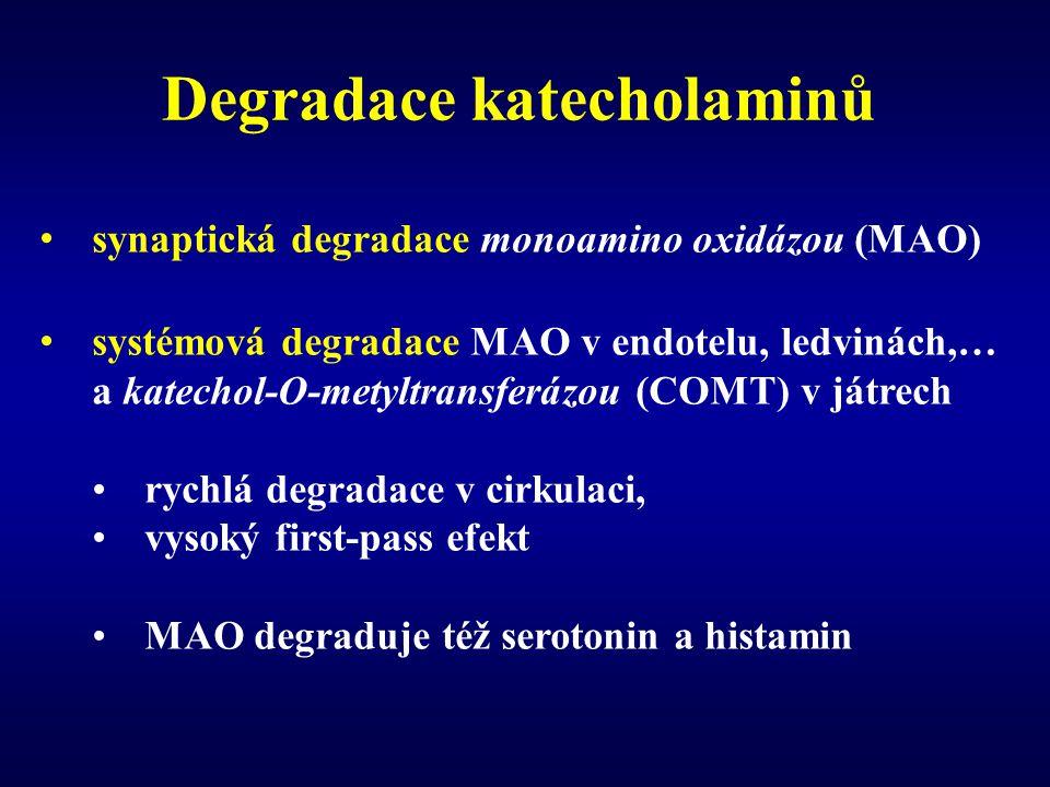 Degradace katecholaminů synaptická degradace monoamino oxidázou (MAO) systémová degradace MAO v endotelu, ledvinách,… a katechol-O-metyltransferázou (COMT) v játrech rychlá degradace v cirkulaci, vysoký first-pass efekt MAO degraduje též serotonin a histamin