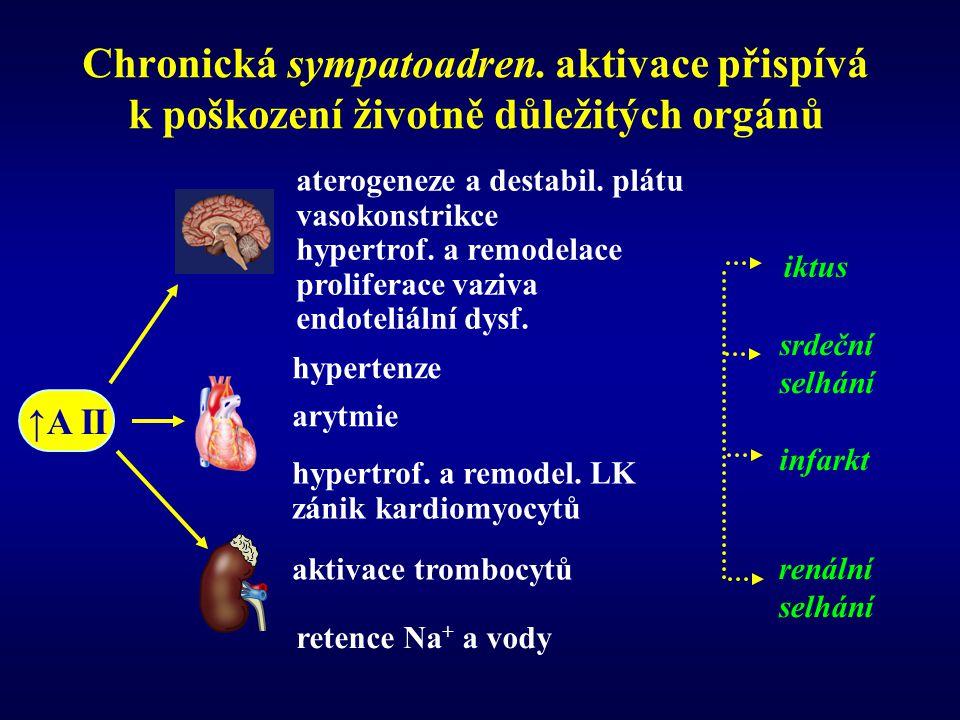 Chronická sympatoadren. aktivace přispívá k poškození životně důležitých orgánů iktus srdeční selhání infarkt renální selhání retence Na + a vody ater