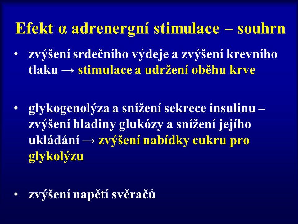 Efekt α adrenergní stimulace – souhrn zvýšení srdečního výdeje a zvýšení krevního tlaku → stimulace a udržení oběhu krve glykogenolýza a snížení sekre