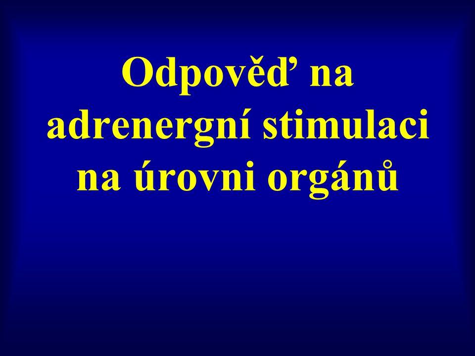 Odpověď na adrenergní stimulaci na úrovni orgánů