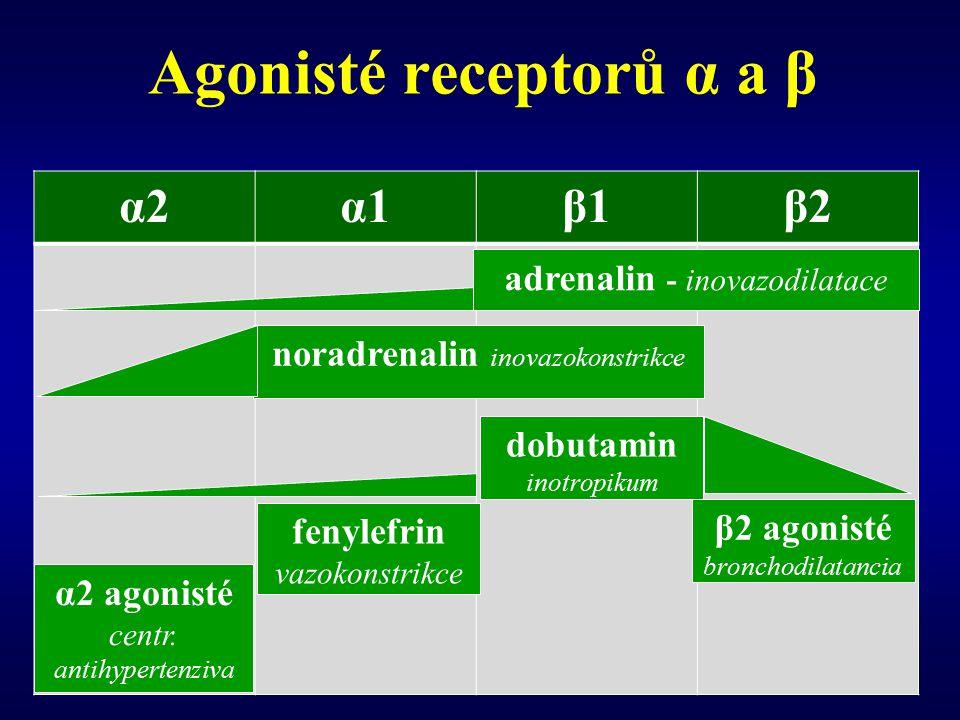 Agonisté receptorů α a β α2α2α1α1β1β1β2β2 adrenalin - inovazodilatace noradrenalin inovazokonstrikce β2 agonisté bronchodilatancia dobutamin inotropikum α2 agonisté centr.