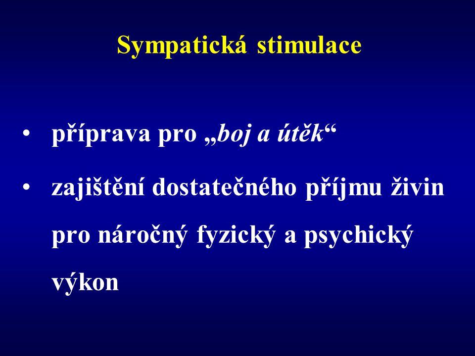 """Sympatická stimulace příprava pro """"boj a útěk"""" zajištění dostatečného příjmu živin pro náročný fyzický a psychický výkon"""