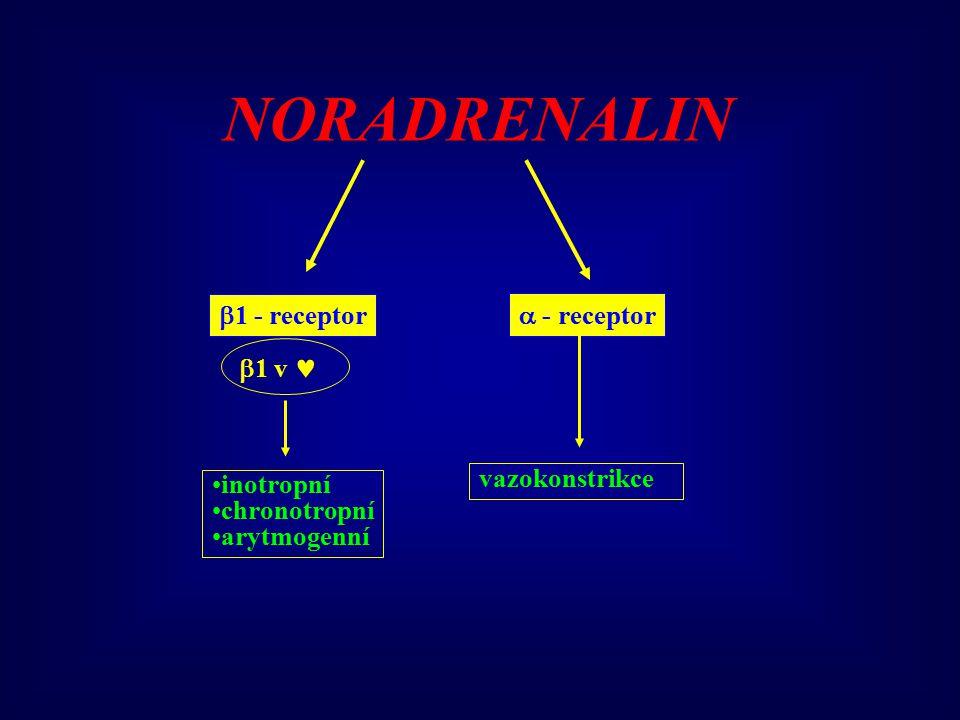  1 - receptor  - receptor NORADRENALIN  1 v inotropní chronotropní arytmogenní vazokonstrikce