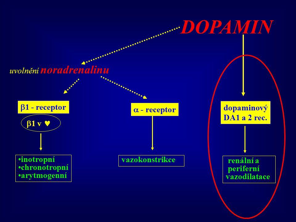  1 - receptor  - receptor dopaminový DA1 a 2 rec. DOPAMIN renální a periferní vazodilatace uvolnění noradrenalinu  1 v inotropní chronotropní arytm