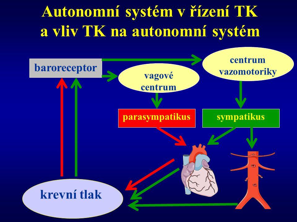 Autonomní systém v řízení TK a vliv TK na autonomní systém baroreceptor parasympatikussympatikus krevní tlak vagové centrum centrum vazomotoriky