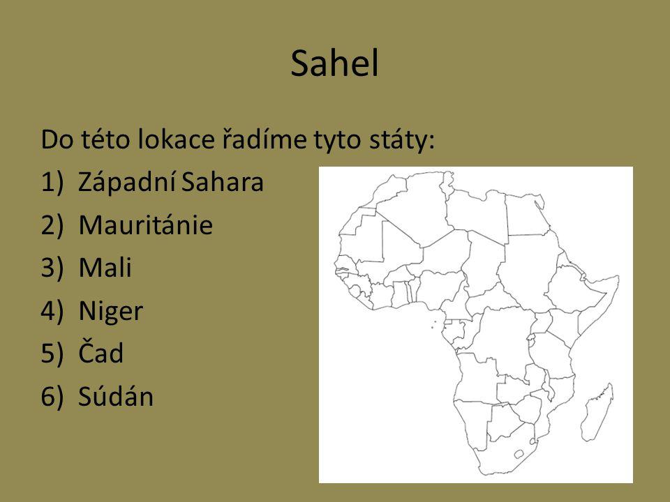 Sahel Do této lokace řadíme tyto státy: 1)Západní Sahara 2)Mauritánie 3)Mali 4)Niger 5)Čad 6)Súdán