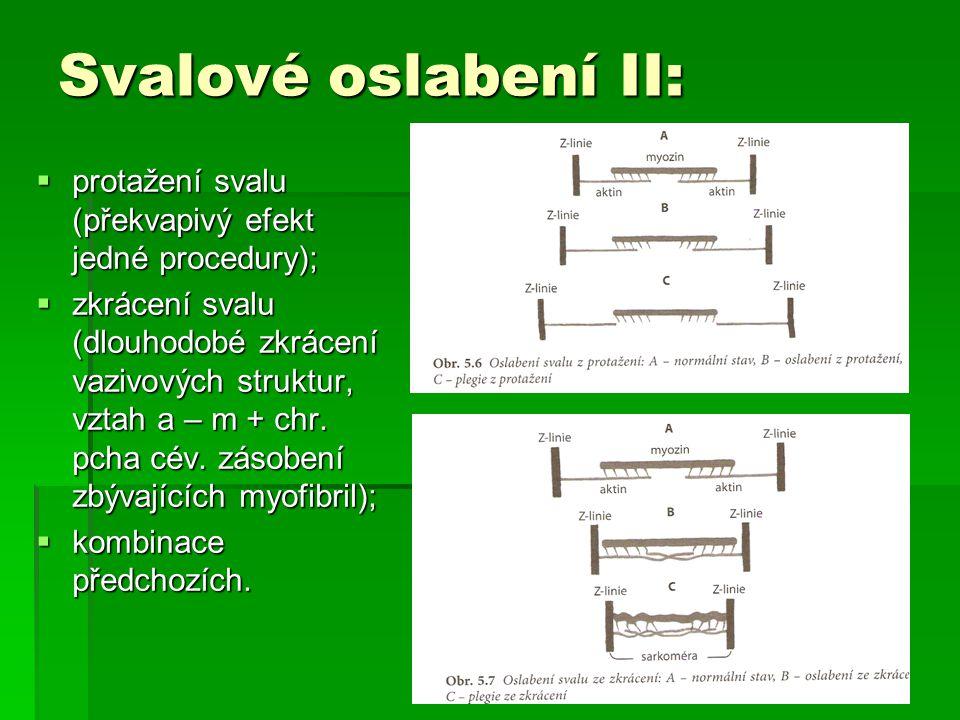 Svalové oslabení II:  protažení svalu (překvapivý efekt jedné procedury);  zkrácení svalu (dlouhodobé zkrácení vazivových struktur, vztah a – m + ch