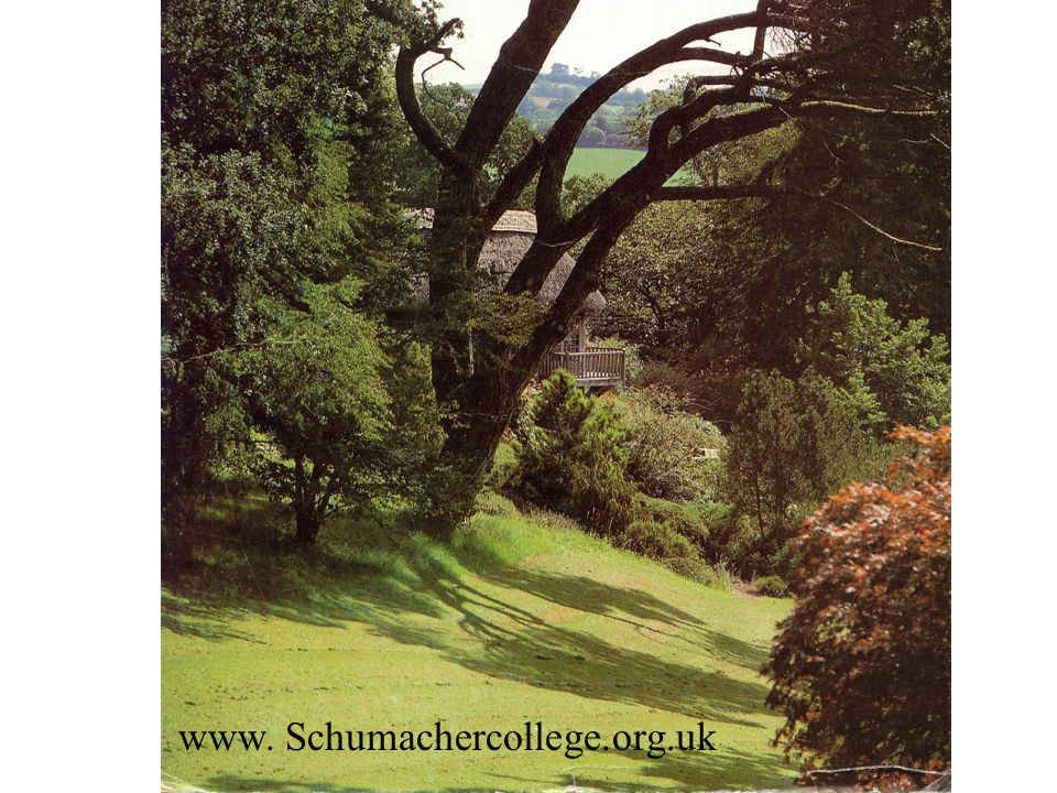 www. Schumachercollege.org.uk