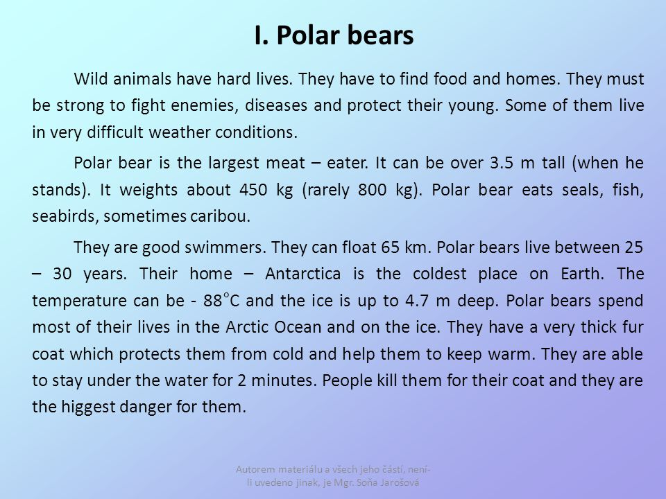 I. Polar bears Wild animals have hard lives. They have to find food and homes.