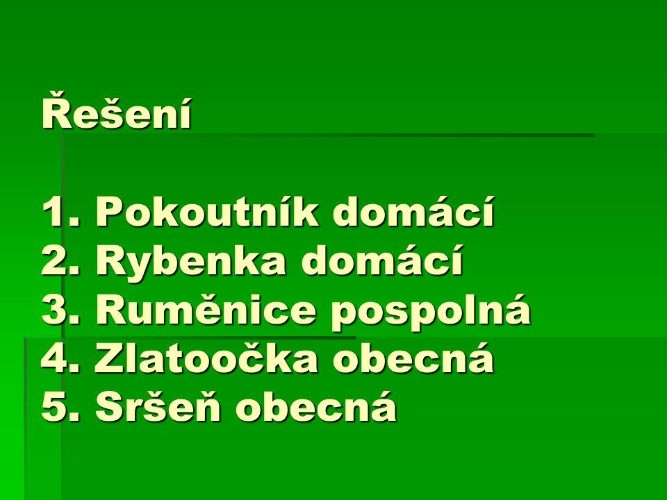 Řešení 1. Pokoutník domácí 2. Rybenka domácí 3. Ruměnice pospolná 4.