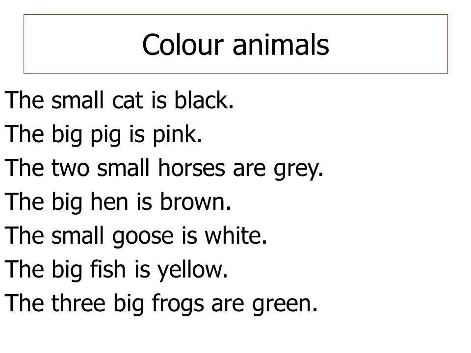 Colour animals The small cat is black. The big pig is pink.