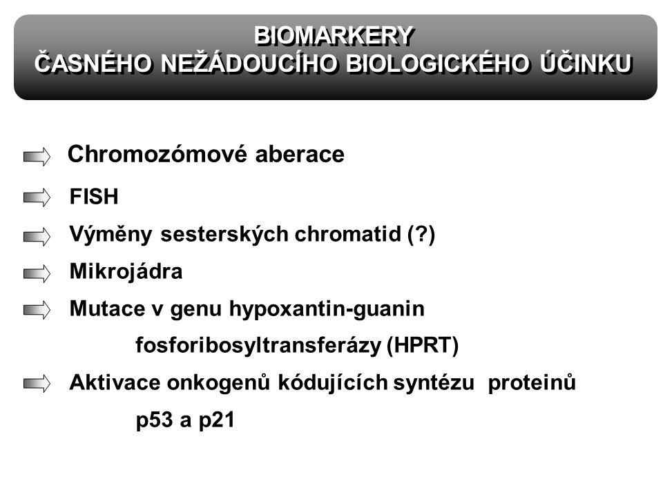 BIOMARKERY ČASNÉHO NEŽÁDOUCÍHO BIOLOGICKÉHO ÚČINKU BIOMARKERY ČASNÉHO NEŽÁDOUCÍHO BIOLOGICKÉHO ÚČINKU FISH Výměny sesterských chromatid (?) Mikrojádra Mutace v genu hypoxantin-guanin fosforibosyltransferázy (HPRT) Aktivace onkogenů kódujících syntézu proteinů p53 a p21 Chromozómové aberace