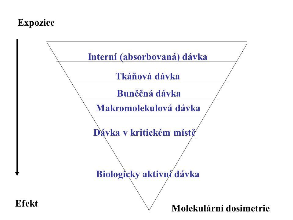 Interní (absorbovaná) dávka Tkáňová dávka Buněčná dávka Makromolekulová dávka Dávka v kritickém místě Biologicky aktivní dávka Expozice Efekt Molekulá