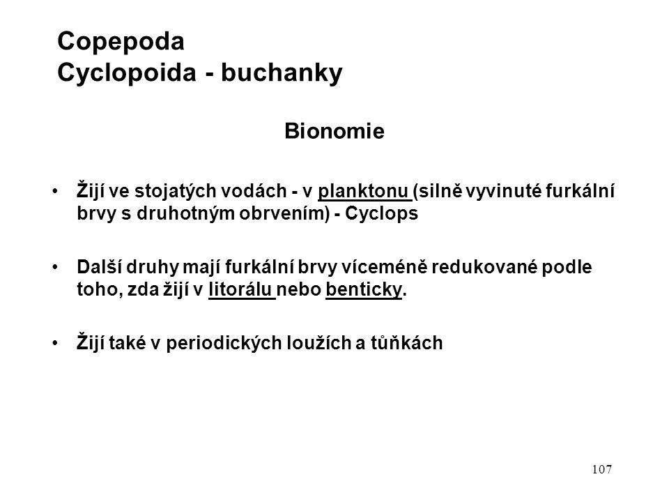 107 Bionomie Žijí ve stojatých vodách - v planktonu (silně vyvinuté furkální brvy s druhotným obrvením) - Cyclops Další druhy mají furkální brvy víceméně redukované podle toho, zda žijí v litorálu nebo benticky.