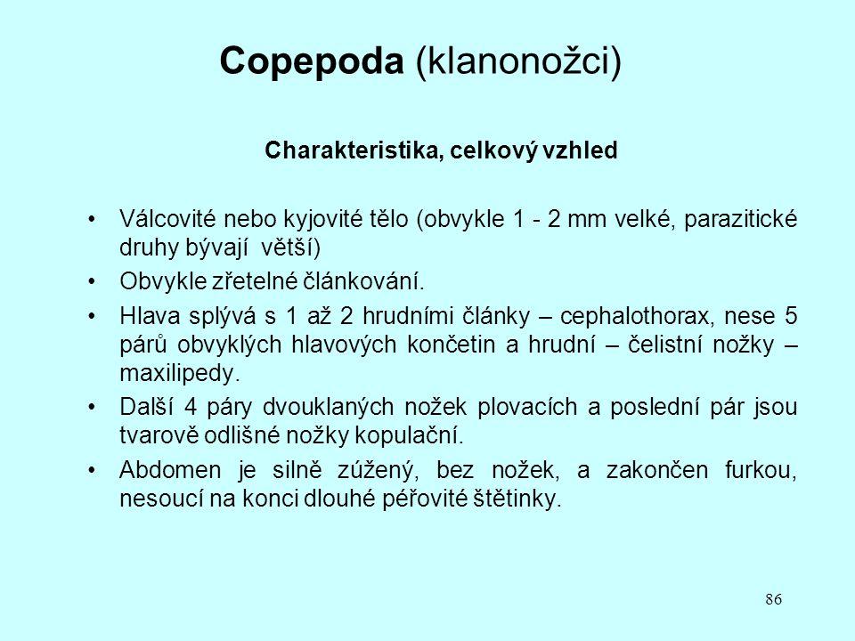86 Copepoda (klanonožci) Charakteristika, celkový vzhled Válcovité nebo kyjovité tělo (obvykle 1 - 2 mm velké, parazitické druhy bývají větší) Obvykle zřetelné článkování.