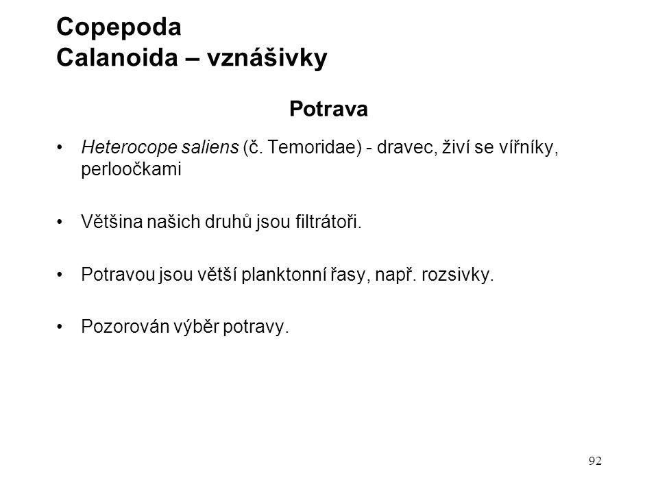 92 Potrava Heterocope saliens (č.