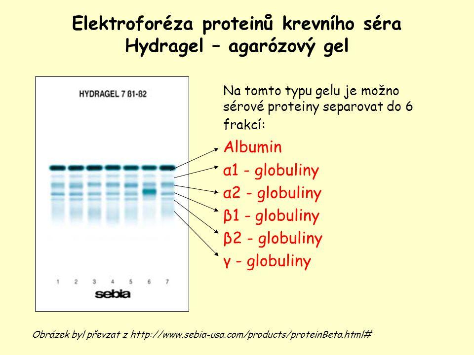 Elektroforéza proteinů krevního séra Hydragel – agarózový gel Obrázek byl převzat z http://www.sebia-usa.com/products/proteinBeta.html# Na tomto typu