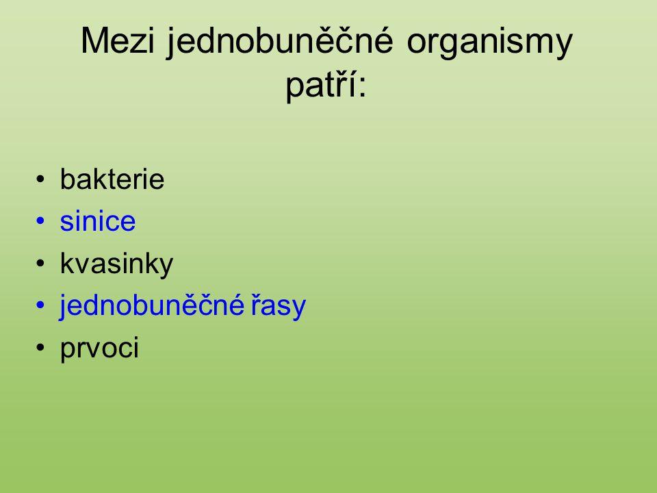 Mezi jednobuněčné organismy patří: bakterie sinice kvasinky jednobuněčné řasy prvoci