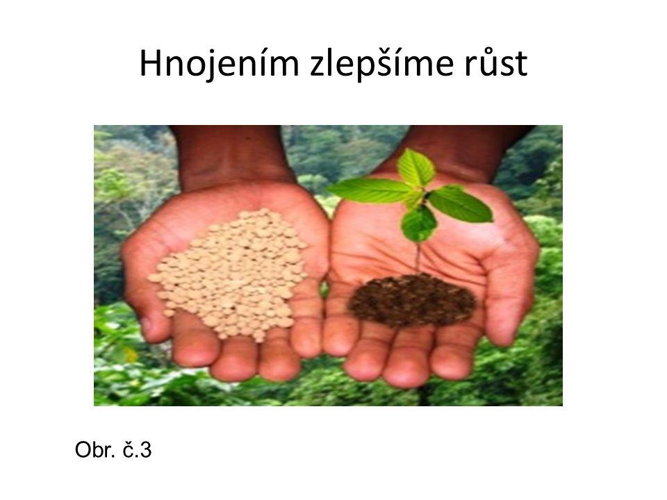 Hnojením zlepšíme růst Obr. č.3