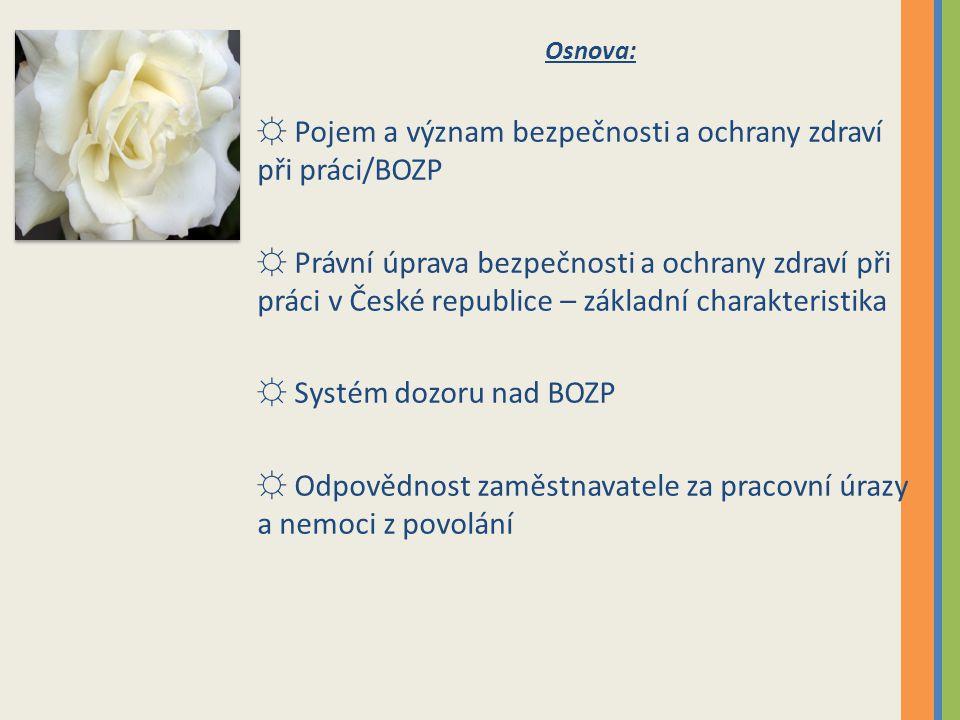 Inspekce práce, z.č. 251/2005 Sb.