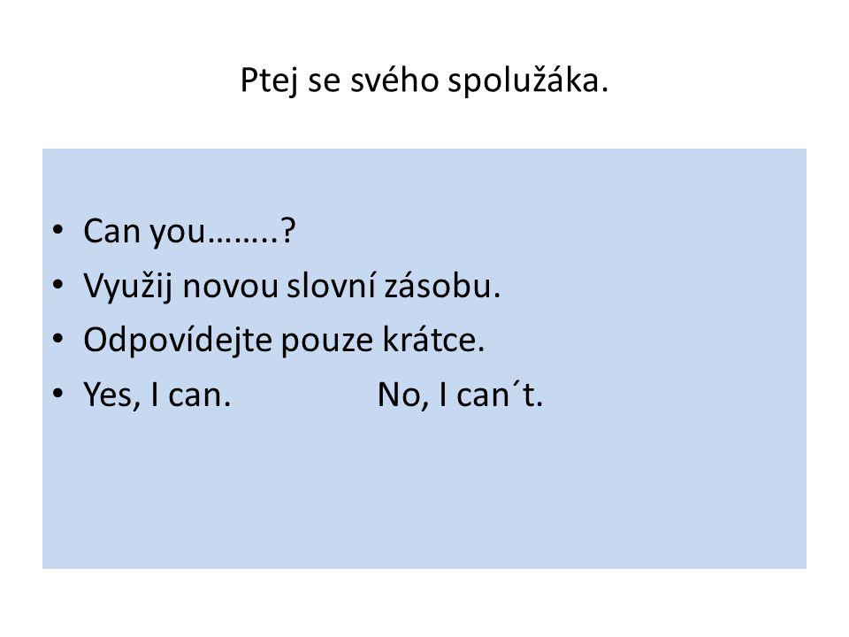 Ptej se svého spolužáka. Can you……... Využij novou slovní zásobu.