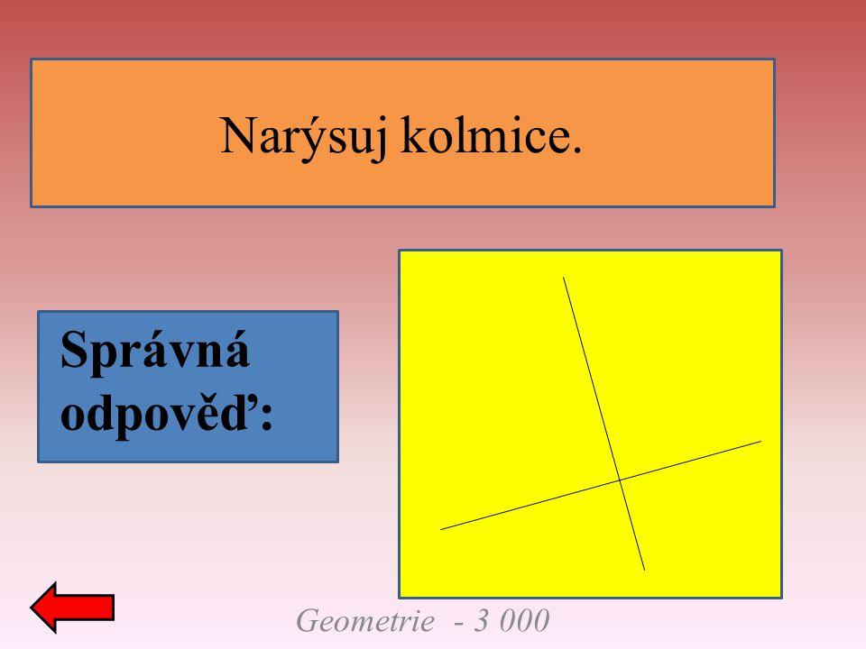 Geometrie - 3 000 Narýsuj kolmice. Správná odpověď: