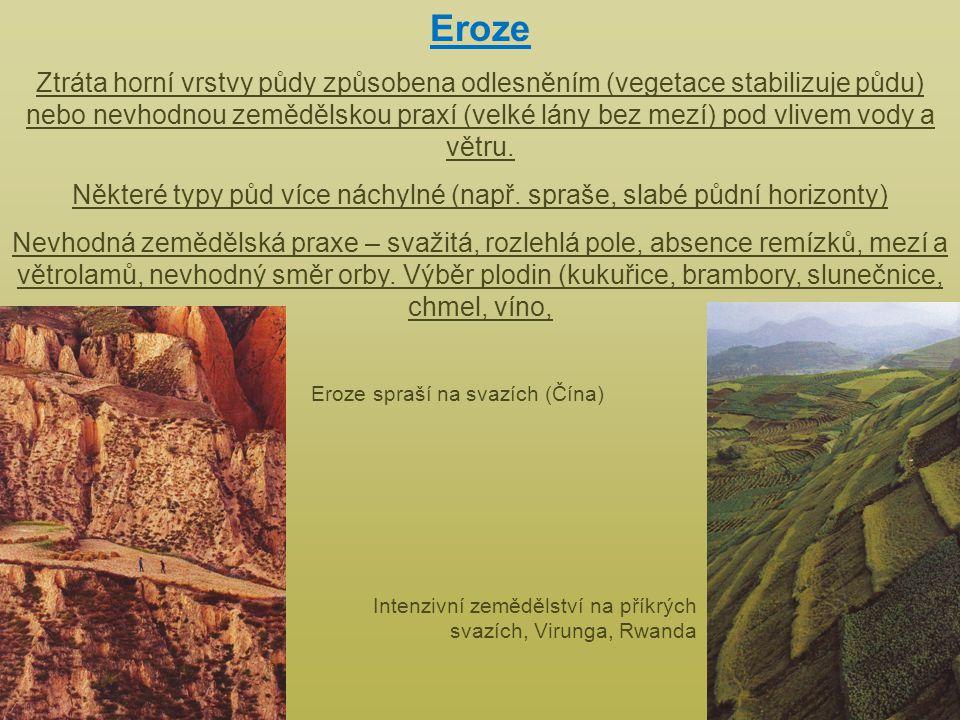 Eroze Ztráta horní vrstvy půdy způsobena odlesněním (vegetace stabilizuje půdu) nebo nevhodnou zemědělskou praxí (velké lány bez mezí) pod vlivem vody