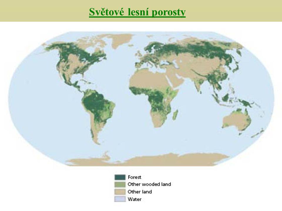 Světové lesní porosty