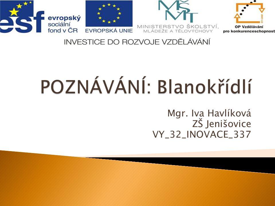 Mgr. Iva Havlíková ZŠ Jenišovice VY_32_INOVACE_337