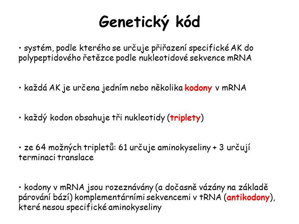 Genetický kód systém, podle kterého se určuje přiřazení specifické AK do polypeptidového řetězce podle nukleotidové sekvence mRNA každá AK je určena j