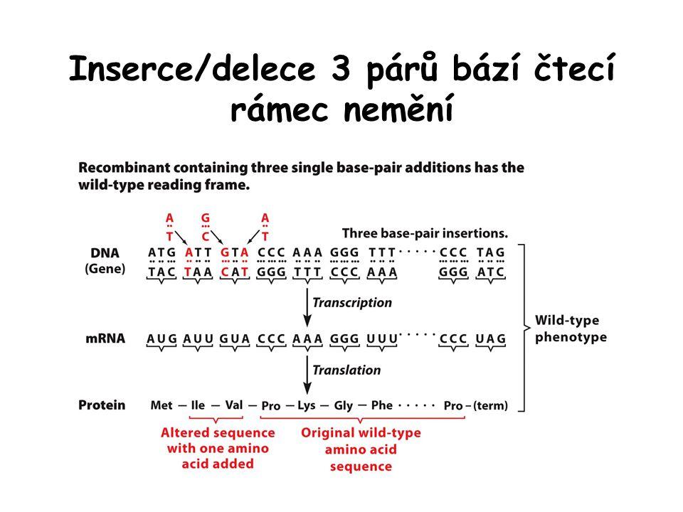 Inserce/delece 3 párů bází čtecí rámec nemění
