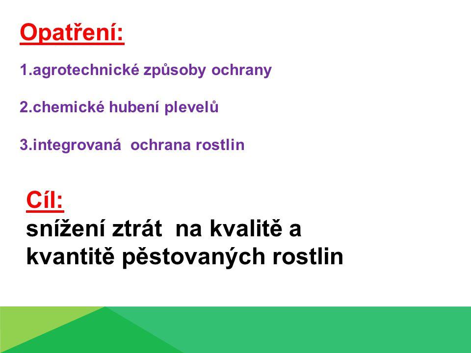 Opatření: 1.agrotechnické způsoby ochrany 2.chemické hubení plevelů 3.integrovaná ochrana rostlin Cíl: snížení ztrát na kvalitě a kvantitě pěstovaných