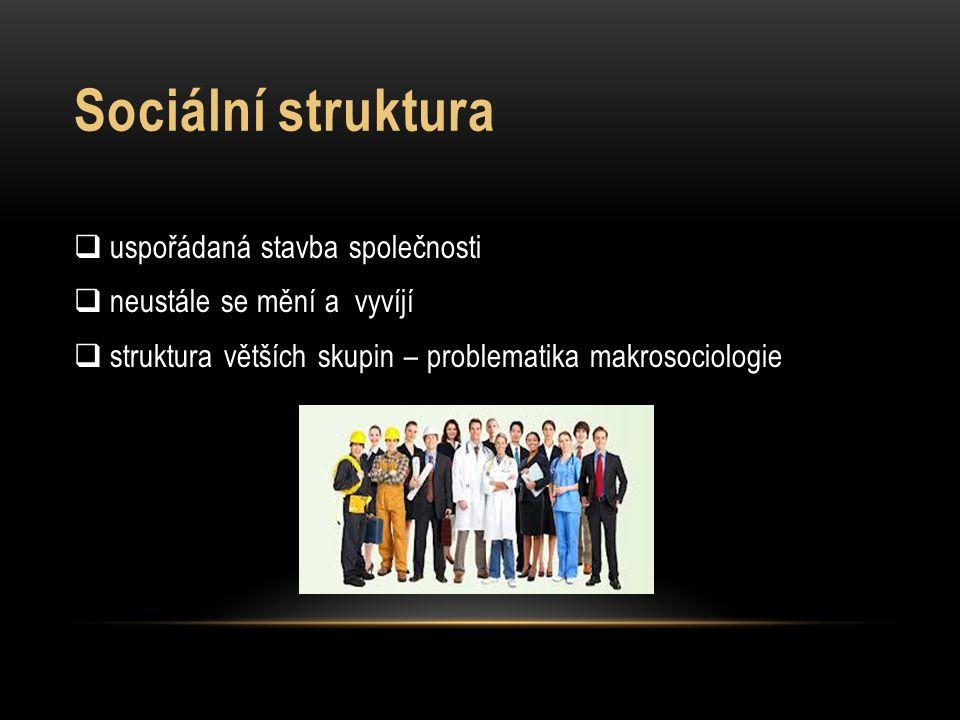 Sociální struktura  uspořádaná stavba společnosti  neustále se mění a vyvíjí  struktura větších skupin – problematika makrosociologie