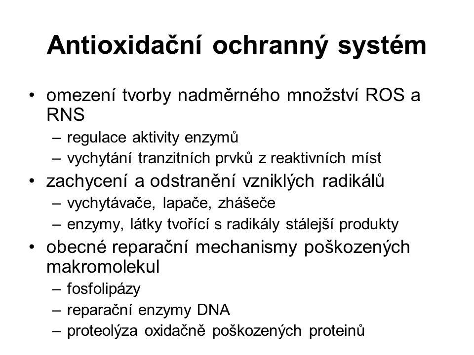 Antioxidační ochranný systém omezení tvorby nadměrného množství ROS a RNS –regulace aktivity enzymů –vychytání tranzitních prvků z reaktivních míst za
