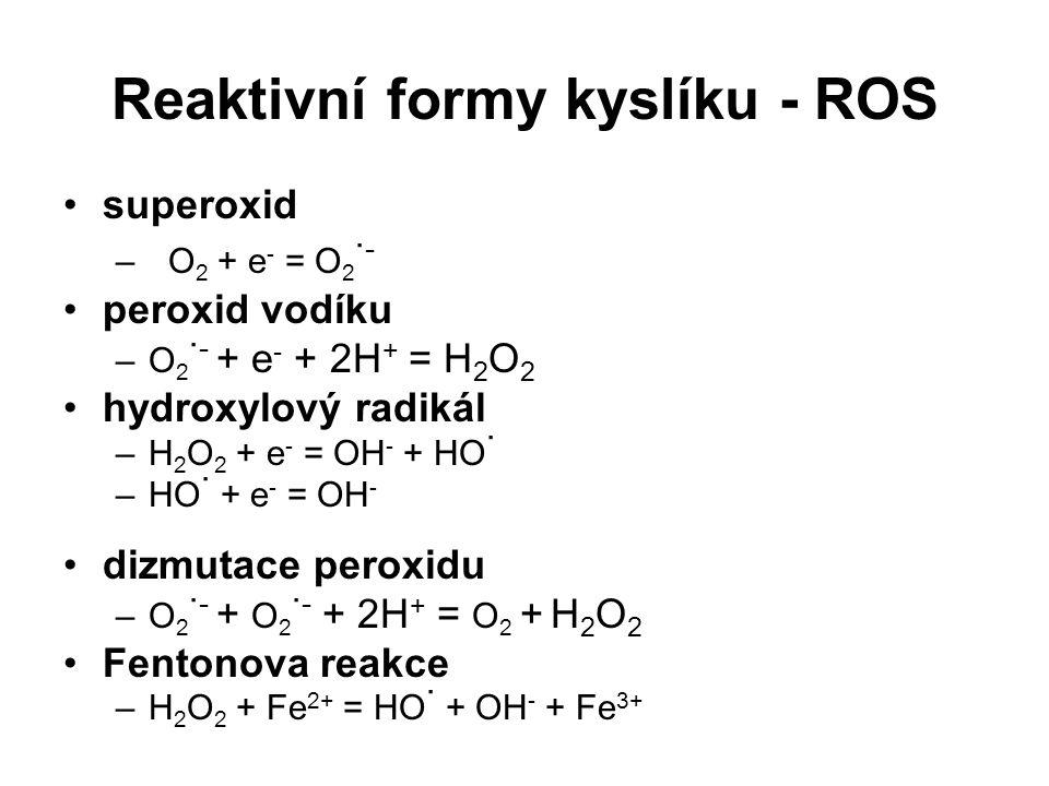 Reaktivní formy kyslíku - ROS superoxid –O 2 + e - = O 2 · - peroxid vodíku –O 2 · - + e - + 2H + = H 2 O 2 hydroxylový radikál –H 2 O 2 + e - = OH -