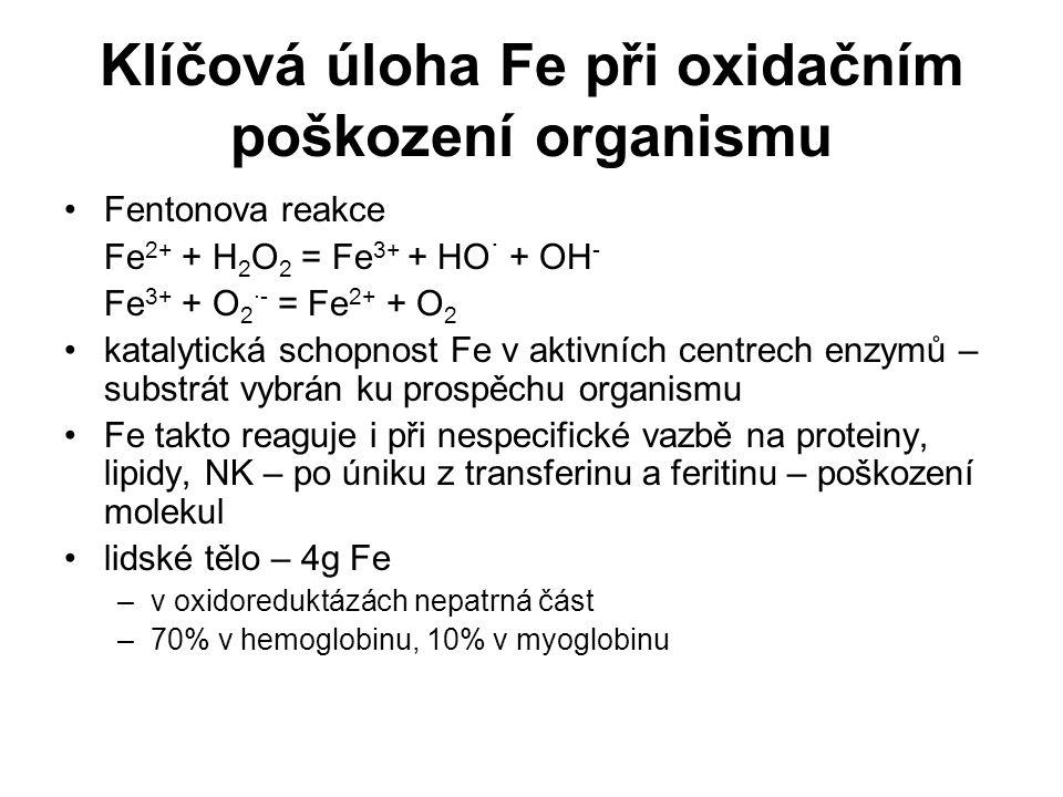 Klíčová úloha Fe při oxidačním poškození organismu Fentonova reakce Fe 2+ + H 2 O 2 = Fe 3+ + HO · + OH - Fe 3+ + O 2 ·- = Fe 2+ + O 2 katalytická sch