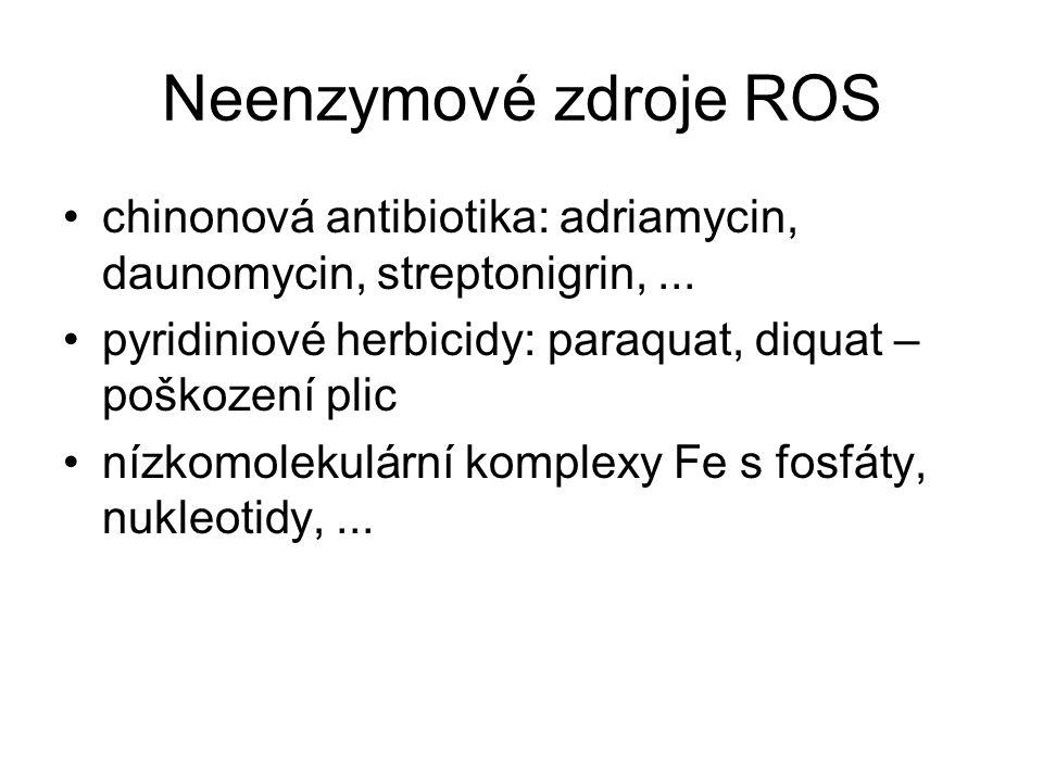 Neenzymové zdroje ROS chinonová antibiotika: adriamycin, daunomycin, streptonigrin,... pyridiniové herbicidy: paraquat, diquat – poškození plic nízkom