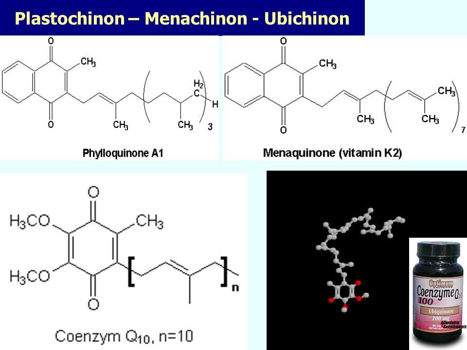Komplex II – E.coli Vyřešená struktura RTG analýzou v rozlišení 2,6 A Prof.Iwata a student Rob Horsefield Imperial College London Science, 299, 700 (2003) FAD sukcinát Fe-S ubichinon Cytochrom b (není součástí řetězce) 40 A SDH efektivněji odvádí e - z FADu = menší riziko vzniku ROS Baktérie používá za dostatečného přístupu O 2 SDH přednostně než fumarát-DH + energeticky účinější - hromadění e- na FADu