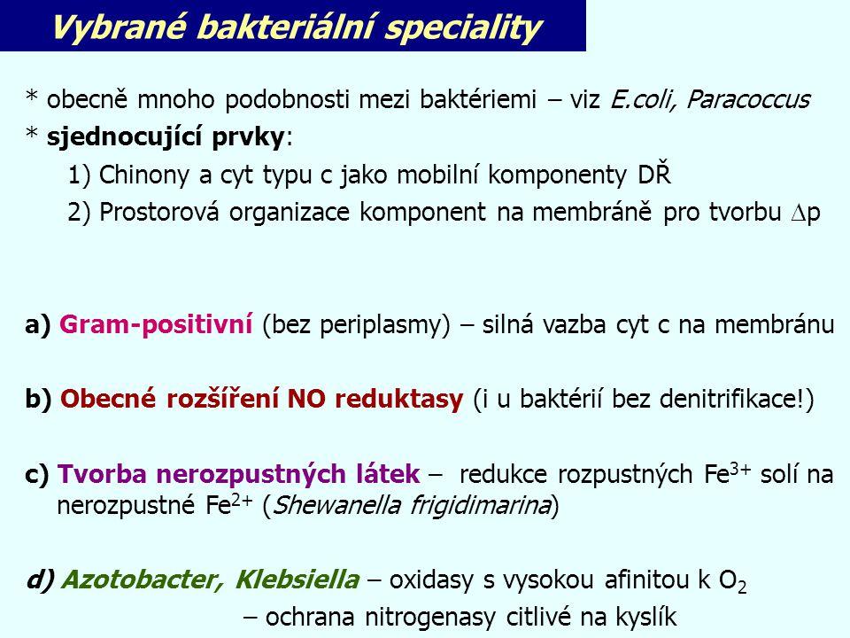 Vybrané bakteriální speciality * obecně mnoho podobnosti mezi baktériemi – viz E.coli, Paracoccus * sjednocující prvky: 1)Chinony a cyt typu c jako mo