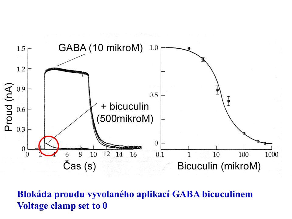 Blokáda proudu vyvolaného aplikací GABA bicuculinem Voltage clamp set to 0