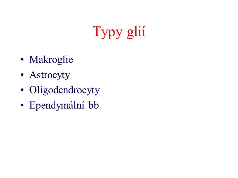Typy glií Makroglie Astrocyty Oligodendrocyty Ependymální bb