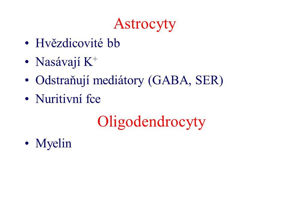 Astrocyty Hvězdicovité bb Nasávají K + Odstraňují mediátory (GABA, SER) Nuritivní fce Oligodendrocyty Myelin