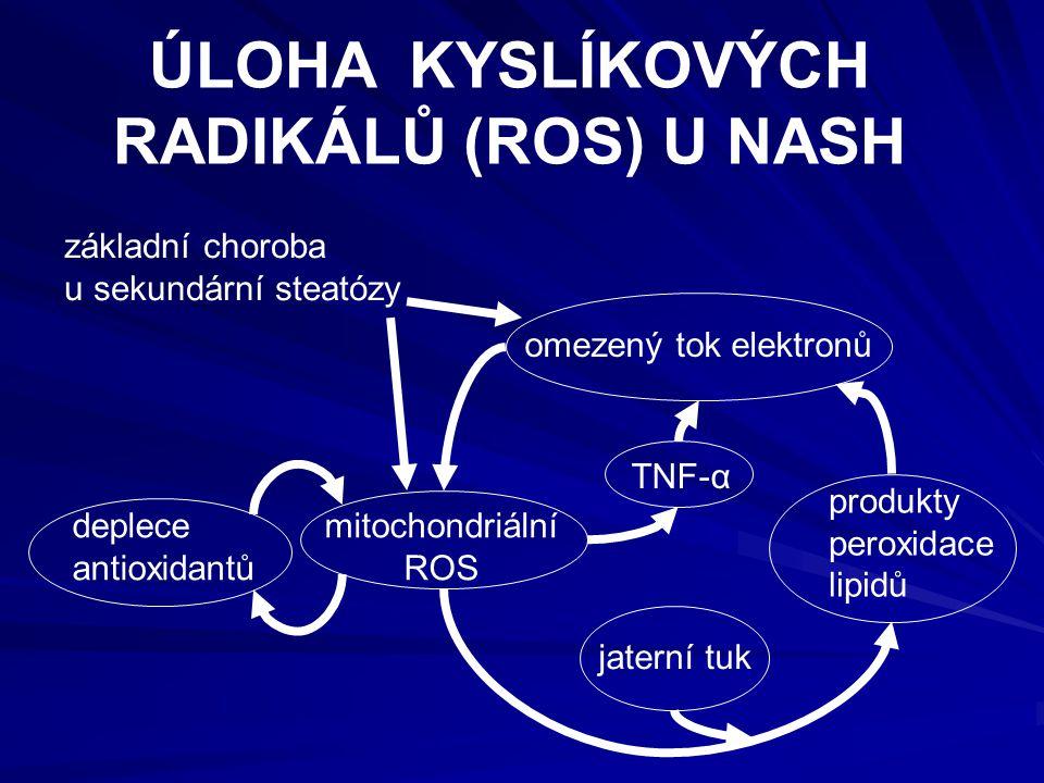 omezený tok elektronů základní choroba u sekundární steatózy deplece antioxidantů mitochondriální ROS TNF-α jaterní tuk ÚLOHA KYSLÍKOVÝCH RADIKÁLŮ (ROS) U NASH produkty peroxidace lipidů