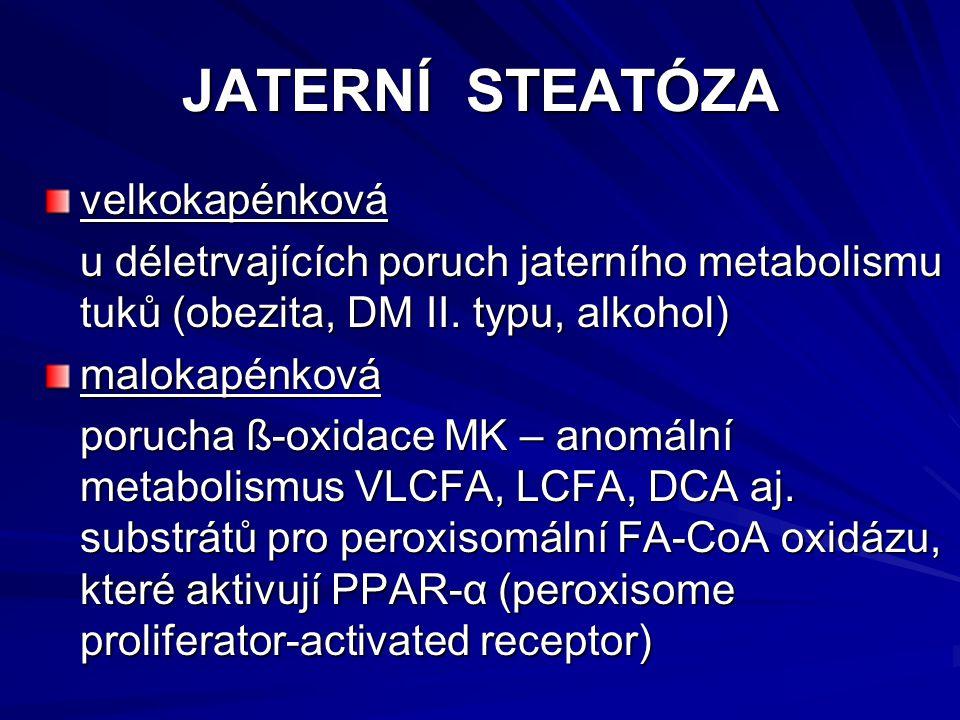 JATERNÍ STEATÓZA velkokapénková u déletrvajících poruch jaterního metabolismu tuků (obezita, DM II. typu, alkohol) u déletrvajících poruch jaterního m