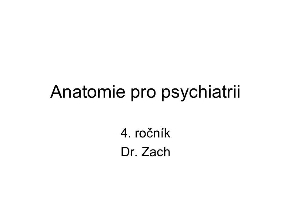 Anatomie pro psychiatrii 4. ročník Dr. Zach