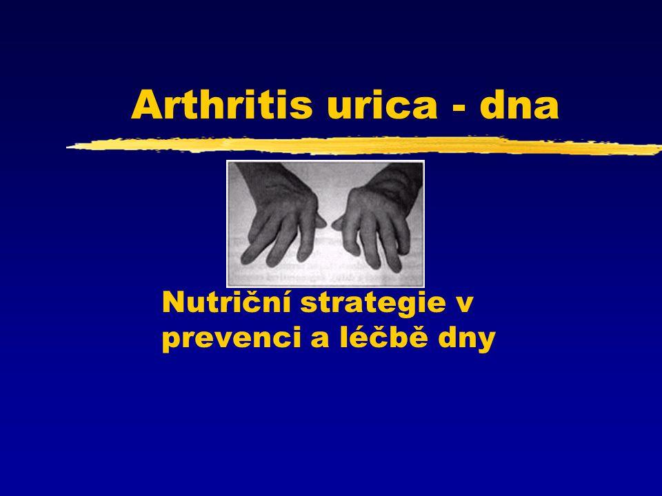 Arthritis urica - dna Nutriční strategie v prevenci a léčbě dny