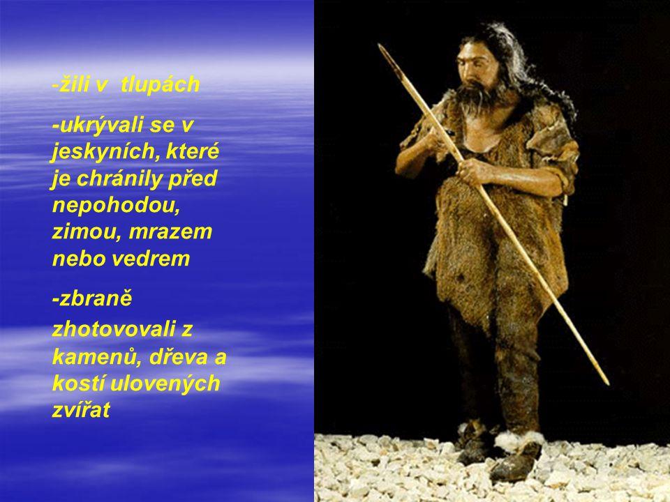 -žili v tlupách -ukrývali se v jeskyních, které je chránily před nepohodou, zimou, mrazem nebo vedrem -zbraně zhotovovali z kamenů, dřeva a kostí ulov